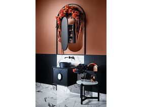 Issy Blossom Vanity 500 wide and Shaving Cabinet