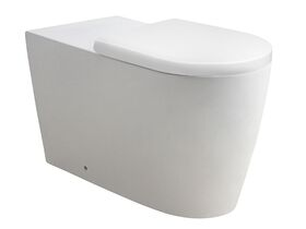 Wolfen 800 Back To Wall Rimless Pan with Double Flap Seat White (4 Star)