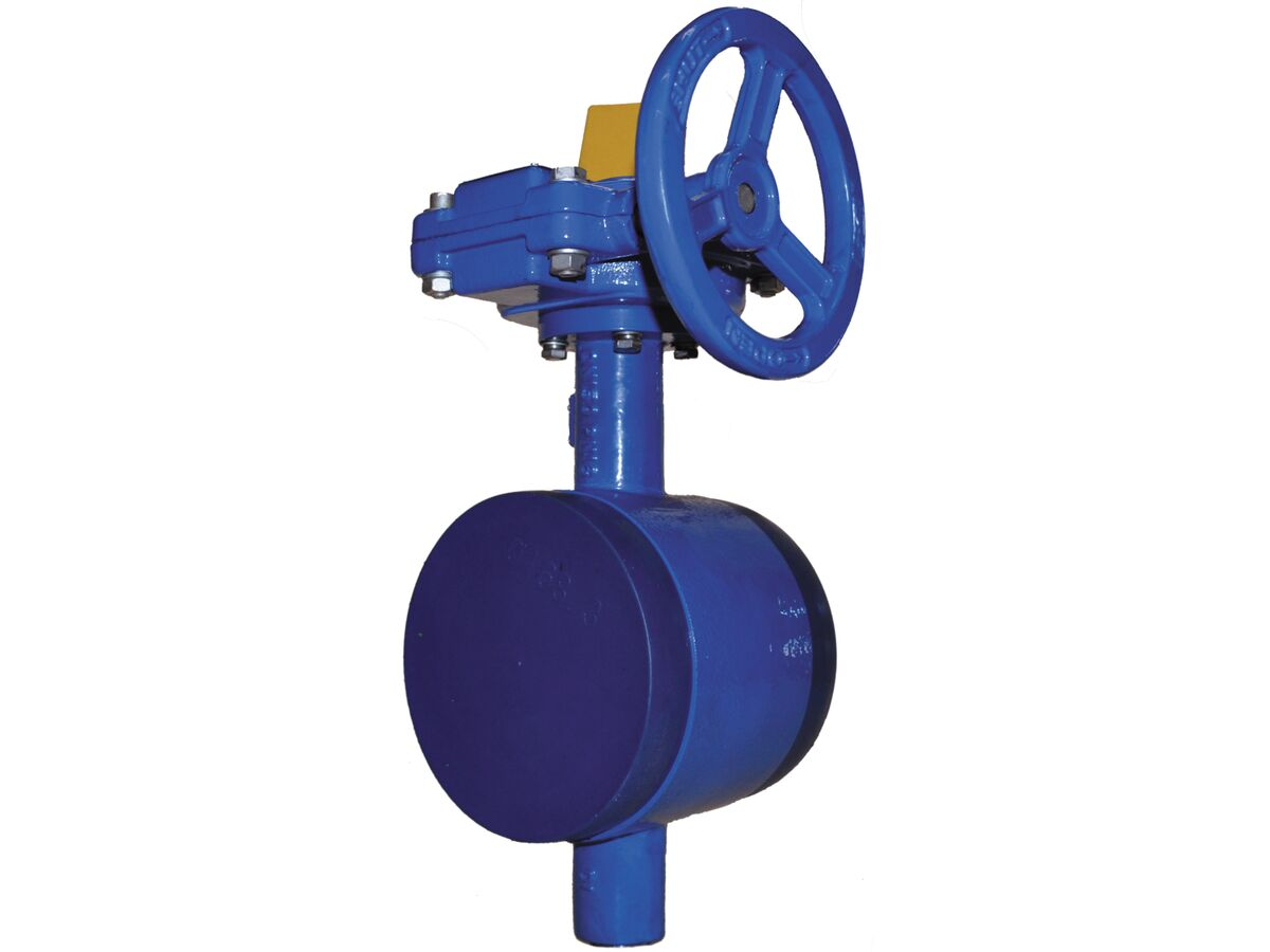 Victaulic Watermark Butterfly Valve S/70B EPDM 76mm