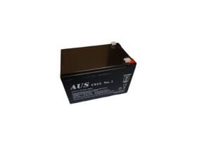 12AH 12VDC Lead Acid Battery
