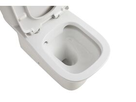 Posh Domaine Rimless Close Coupled Back to Wall Toilet Suite Back Inlet with Soft Close Quick Release Seat (4 Star)