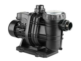 Davey Typhoon Pool Pump T150M