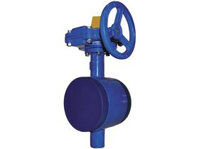 Victaulic V70B Watermark Butterfly Valve E Groove GO